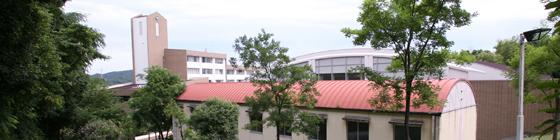 大学 和歌山 信愛